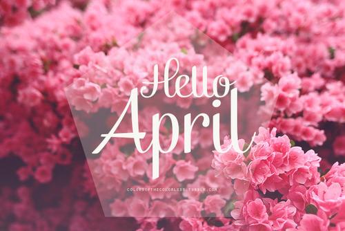 81678-hello-april